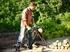 Изображение Цепная пила Bosch AKE 35 S 0600834502